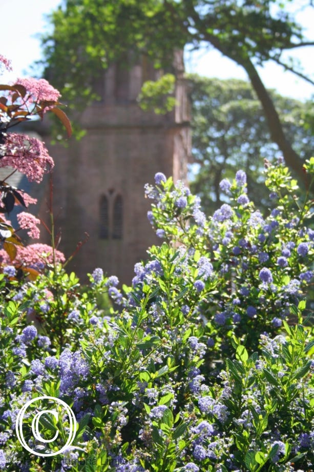 St. Ebbas through the Beadnell House garden