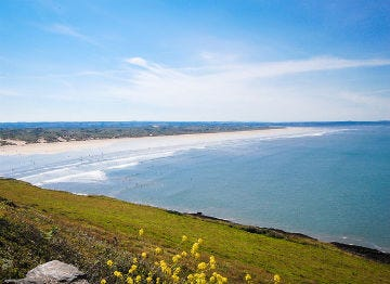 Stand atop the pretty green hillside and look onto Saunton Sands beach